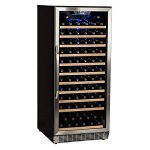 EdgeStar CWR1211SZ 121 Bottle Single Zone Built-in Wine Cooler – Stainless Steel and, Very nice wine cooler-quiet