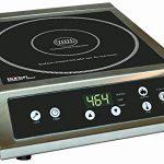 Max Burton 6530 ProChef 3000-Watt Commercial Induction Cooktop – The go to burner