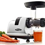 Omega Slow Masticating Juicer Extractor and Nutrition Center – Tested this and it works better than I expected